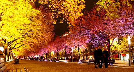 Festival svjetla Berlin 1