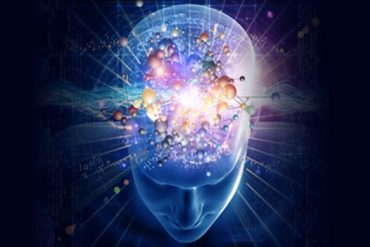 Što je neuroplastičnost
